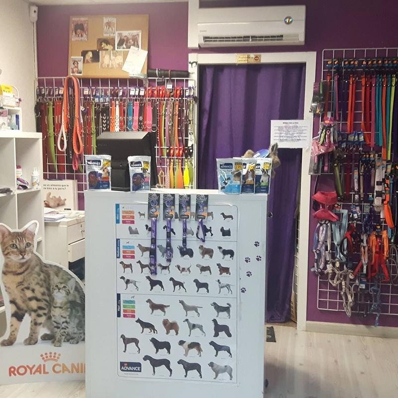 Accesorios y Productos: Servicios de Lobito's Peluquería Canina