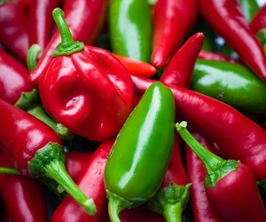 Los chiles mexicanos