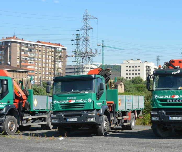 Transporte y alquiler con camiones grúa