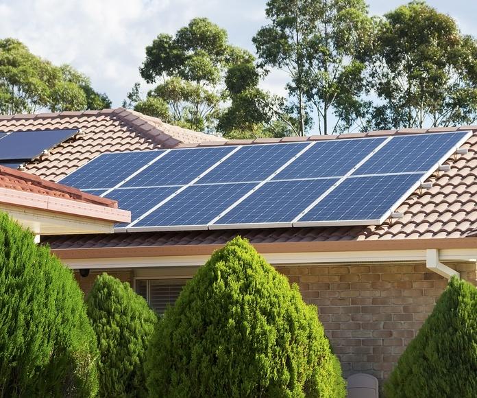 Energía Solar Fotovoltáica: Servicios de Nextland Bio