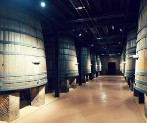 Vinilos y fotos gran formato para interiorismo y decoración