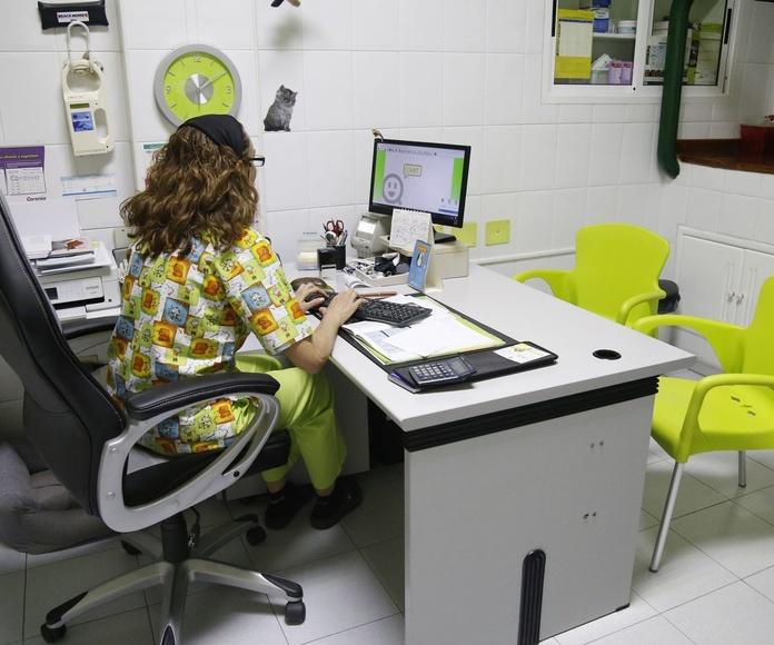 Veterinarios en el centro de tenerife