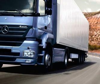 Seguro de mercancías: Servicios de Gesticotrans