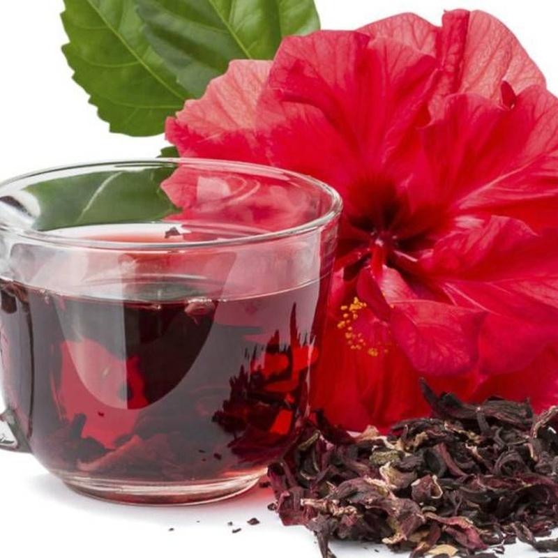 Fitoterapia: Productos de Herbolario D'Magnolia