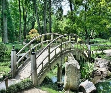 Diseños de jardines Cádiz