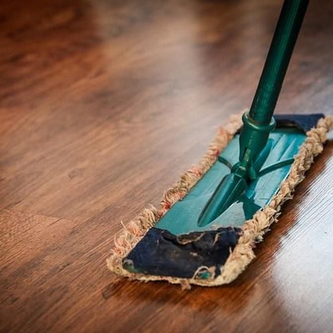 Limpieza y tratamientos para suelos