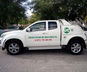 Grúa para Maquinaria: Servicios de Grúas Palma
