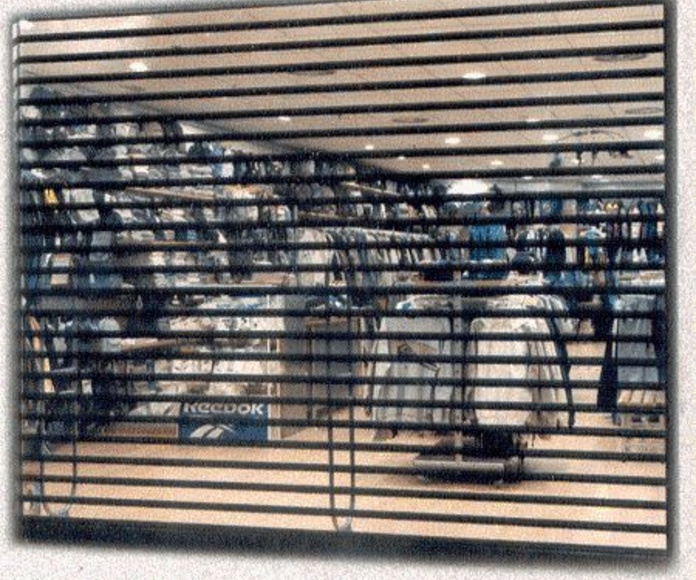Persianas con Visibilidad  : Servicios de Grupo del Águila