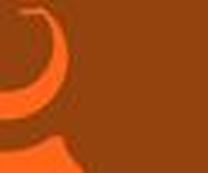 ceramicas la paloma
