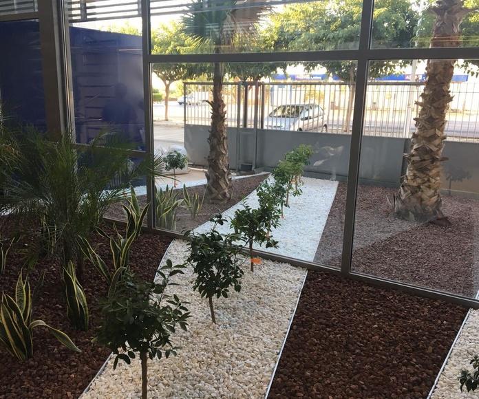 Mantenimiento de Jardines: servicios de Podavalti