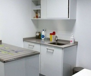 Todos los productos y servicios de Veterinarios: Urgencias Veterinarias Zaragoza