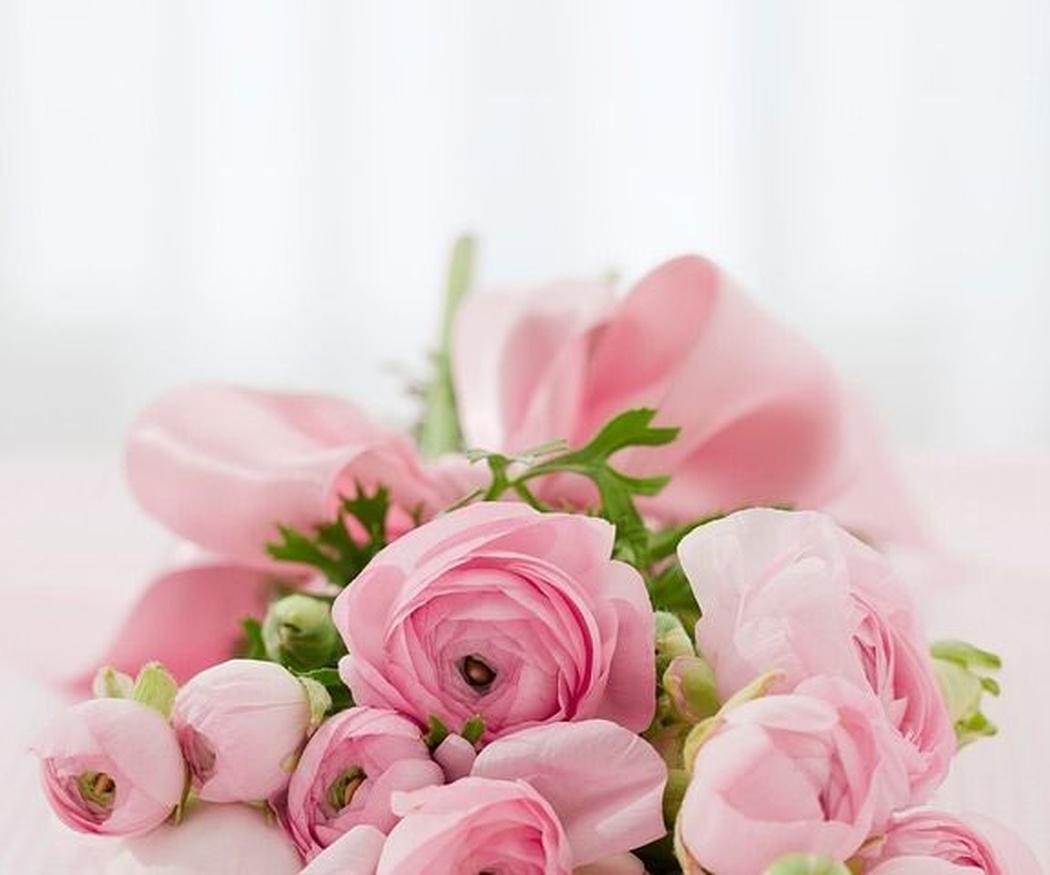 ¿Con qué flor te identificas?