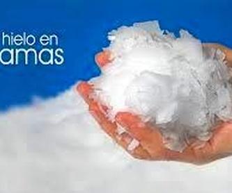 Nugget. Especial para mojitos: Productos y servicios de Hielos Alvarado
