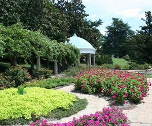 Jardinería y paisajismo
