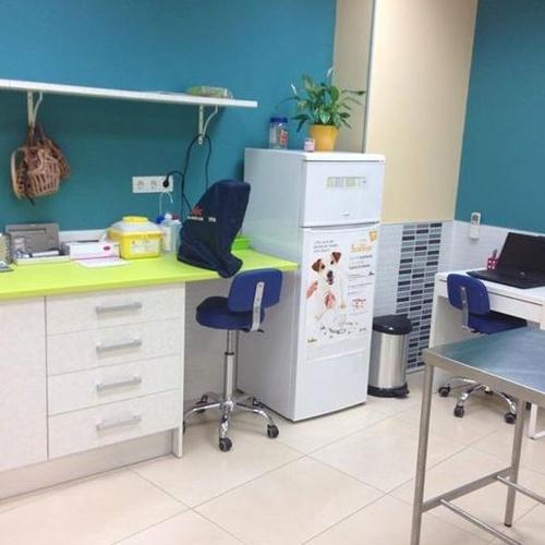 Sala de consulta exclusiva para perros