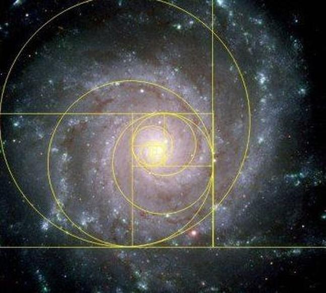 Feliz día de... la sucesión de Fibonacci