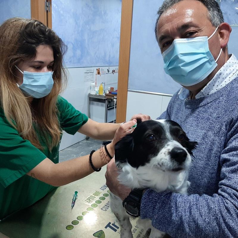 Amparo Vilar - Veterinaria:  de Clínica Veterinaria Rocafort