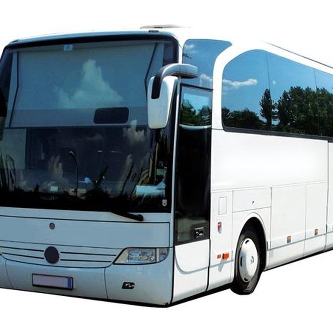 Los autobuses más conocidos en todo el mundo