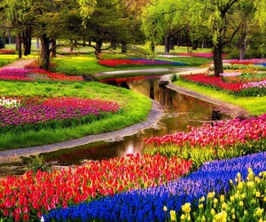 Áreas verdes y jardinería en Oviedo