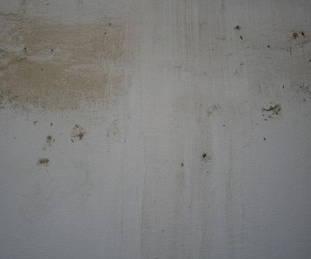 ¿Por qué aparecen humedades en las viviendas?