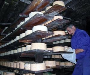 Queso artesano cabrales en Asturias