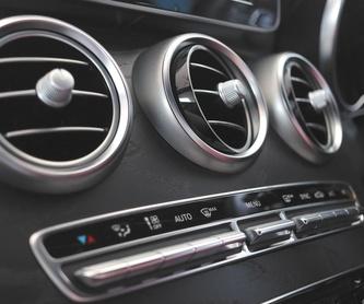 Especialistas en autocaravanas: Catálogo de VAM AUTOS