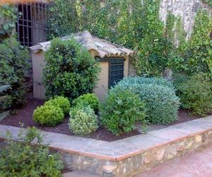 Diseño de jardines en Reus