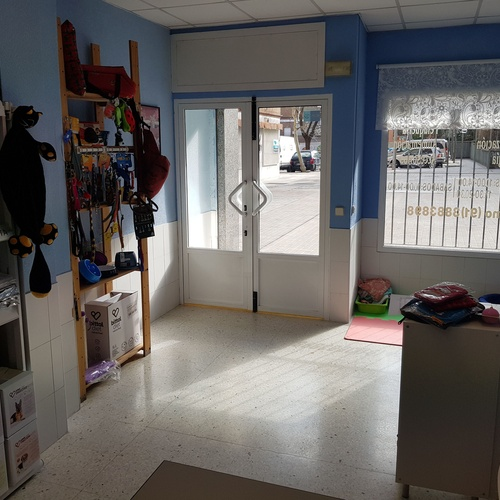 Clínica Veterinaria en Madrid, Hortaleza y Canillas sala de espera