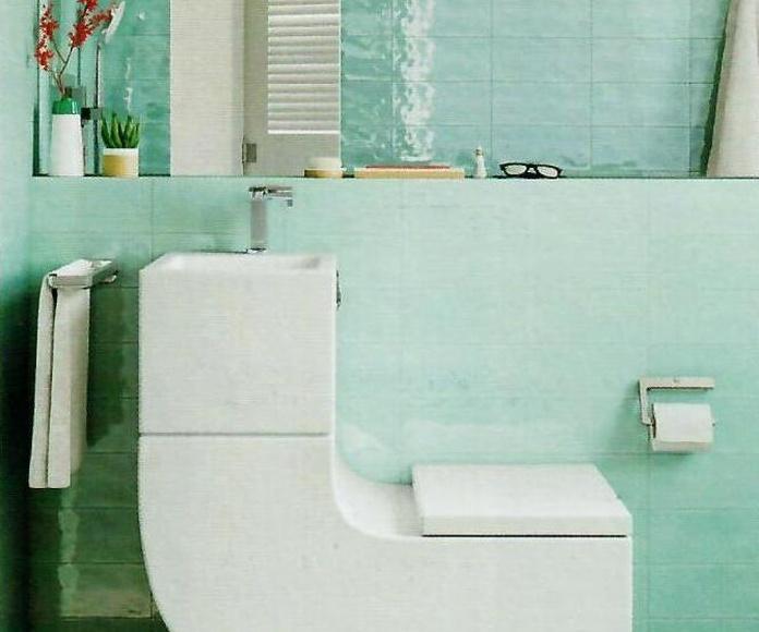Sanitario 2en1 (utiliza con un filtro el agua del lavabo para tirar de la cisterna)