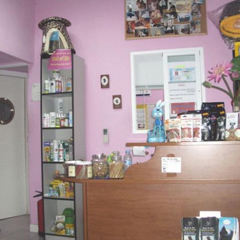 Venta de accesorios: Servicios de Clínica Veterinaria Pirámides