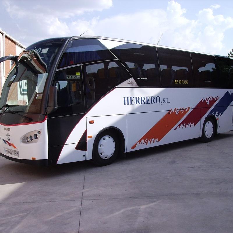 Autocares de 28 plazas: Servicios de Autocares Herrero