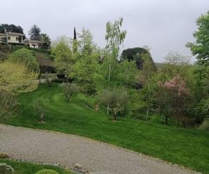 Mantenimiento de jardines y huertos