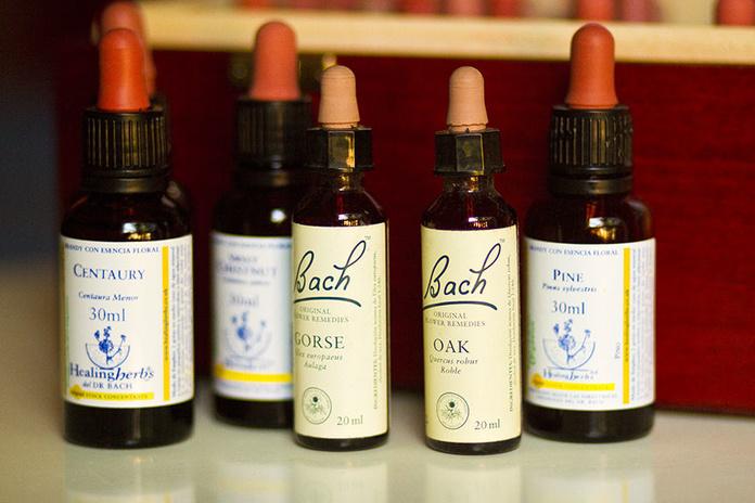 Terapia Floral del Dr Bach