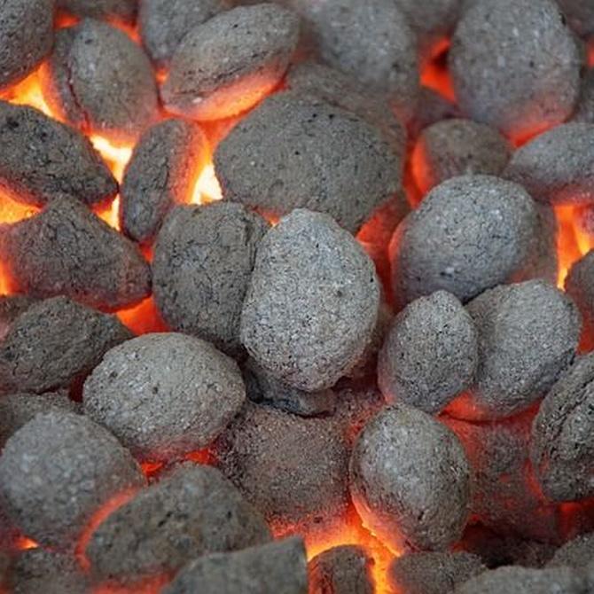 ¿Cómo se hace el carbón vegetal?