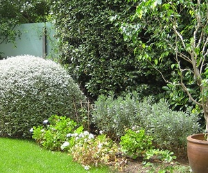 Proyectos de jardinería en Barcelona
