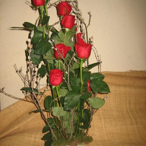 Centro vegetativo de rosa