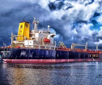 Abanderamientos: Ingeniería naval e industrial de José Manuel Rebollido Lorenzo Ingeniero naval e Ingeniero industrial