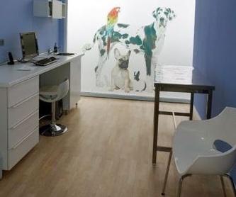 Servicios veterinarios: Servicios de Clínica Veterinaria Minuvet León-Urgencias 24h