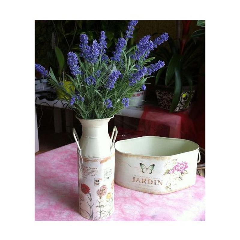 Maceteros, jardineras, floreros,...: Catálogo de Flores Maranta