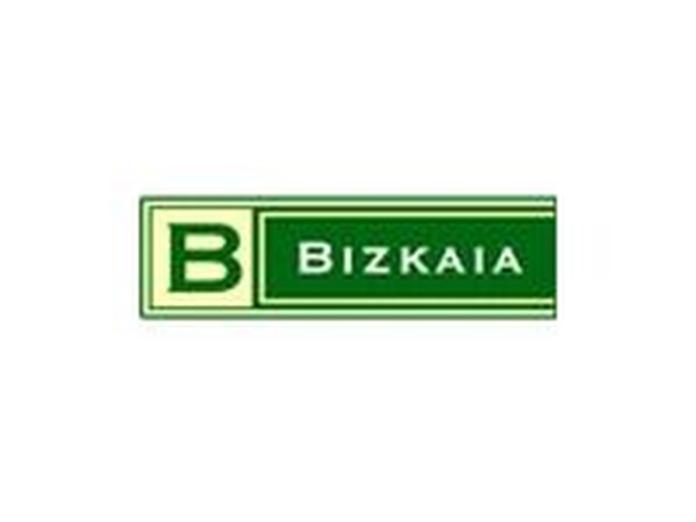 ON LINE: SERVICIOS de Bizkaia Funerarias