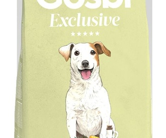 Accesorios y complementos: Catálogo de MamaDog Grooming & Pet Shop
