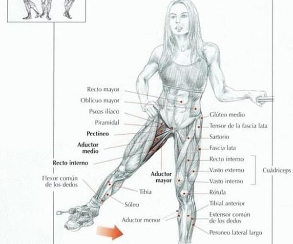 Lifting crural: cirugia del descolgamiento de muslos