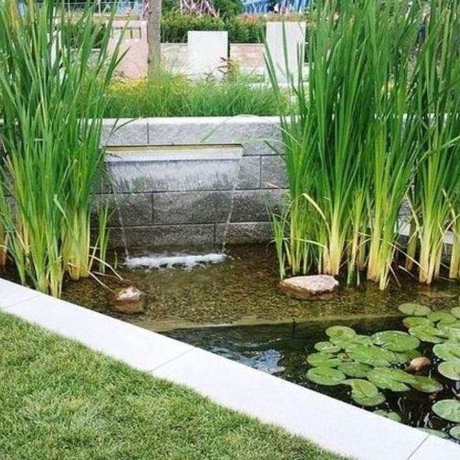Los secretos del mejor jardín