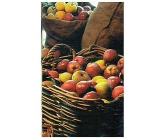 Sidra de Hielo: Productos de Sidra Riestra