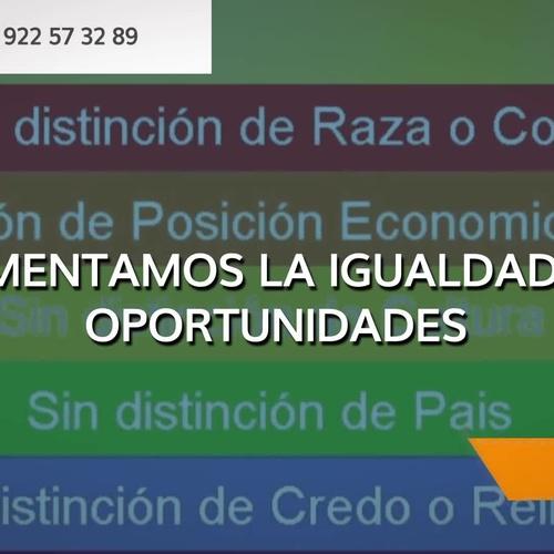 Asociación sin ánimo de lucro especializada en la promoción de Igualdad de Oportunidades en Santa Cruz de Tenerife | Asociación Domitila