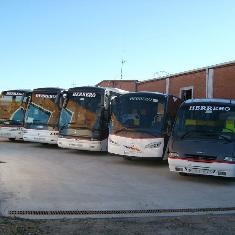 Autocares de 39 plazas: Servicios de Autocares Herrero