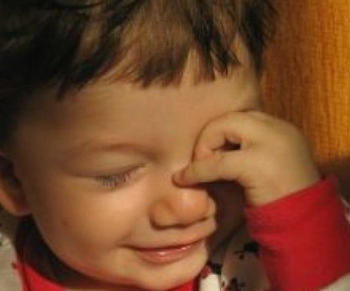 Madrugadores: Servicios  de Centro de Educación Infantil Menuts