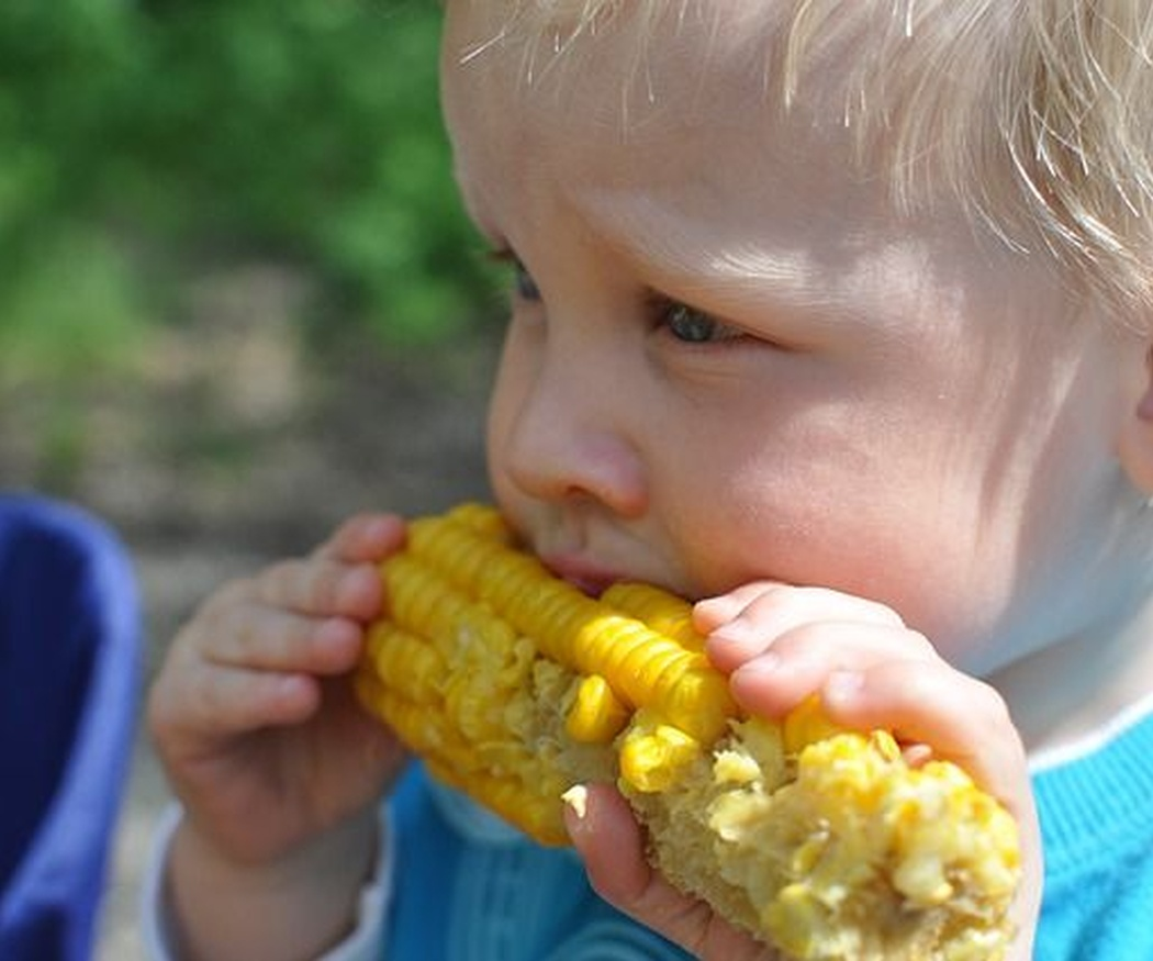 Cinco consejos para disfrutar la comida con niños pequeños