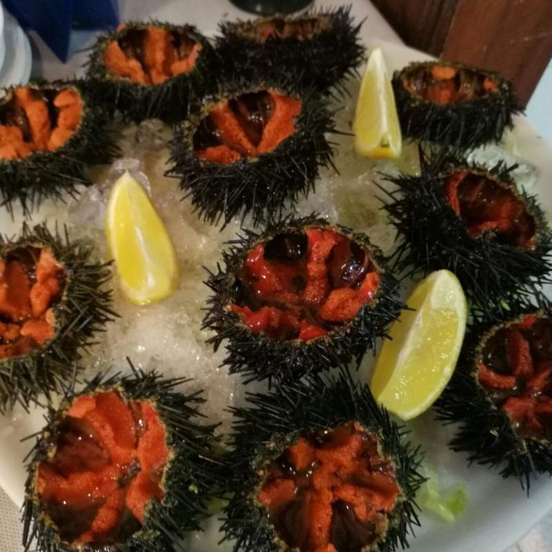 Erizos del mar listos para comérselos!!