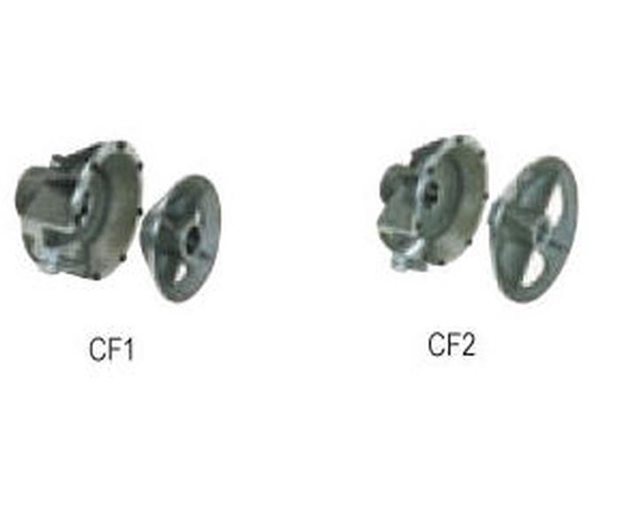 CF1 y CF2